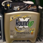 Is Roundup Causing Cancer?