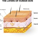 Common Skin Disorders: description, treatment and prevention